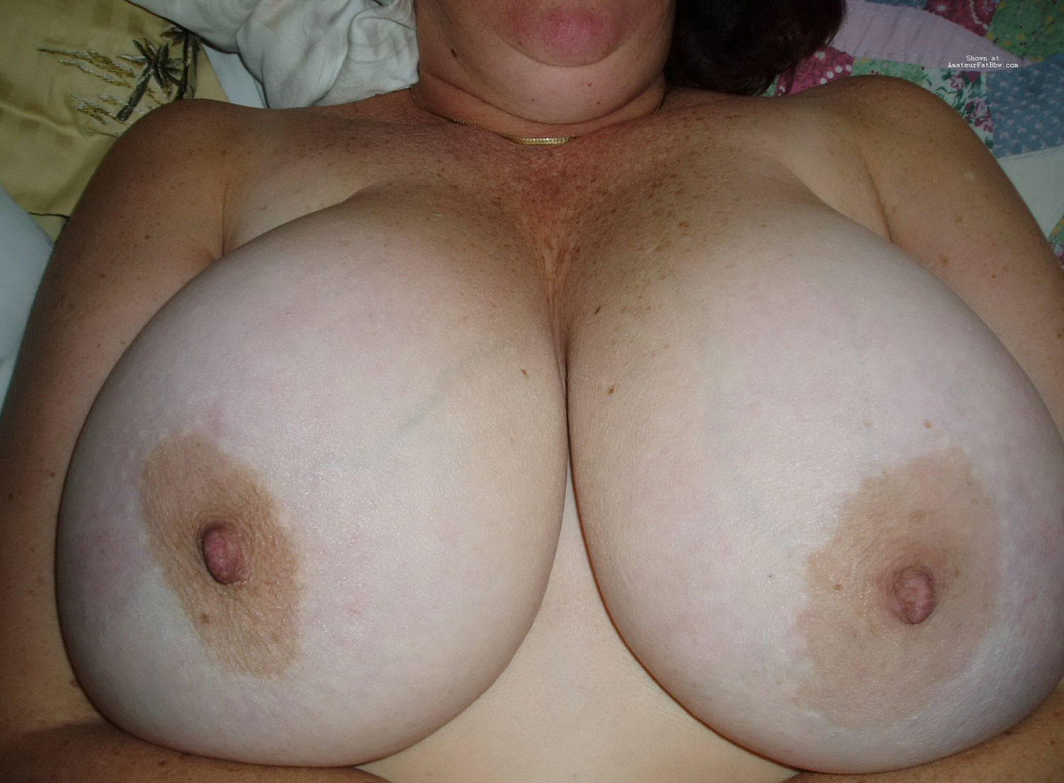 favorite boobs and bbw